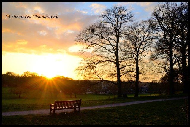 Park sunset FINAL