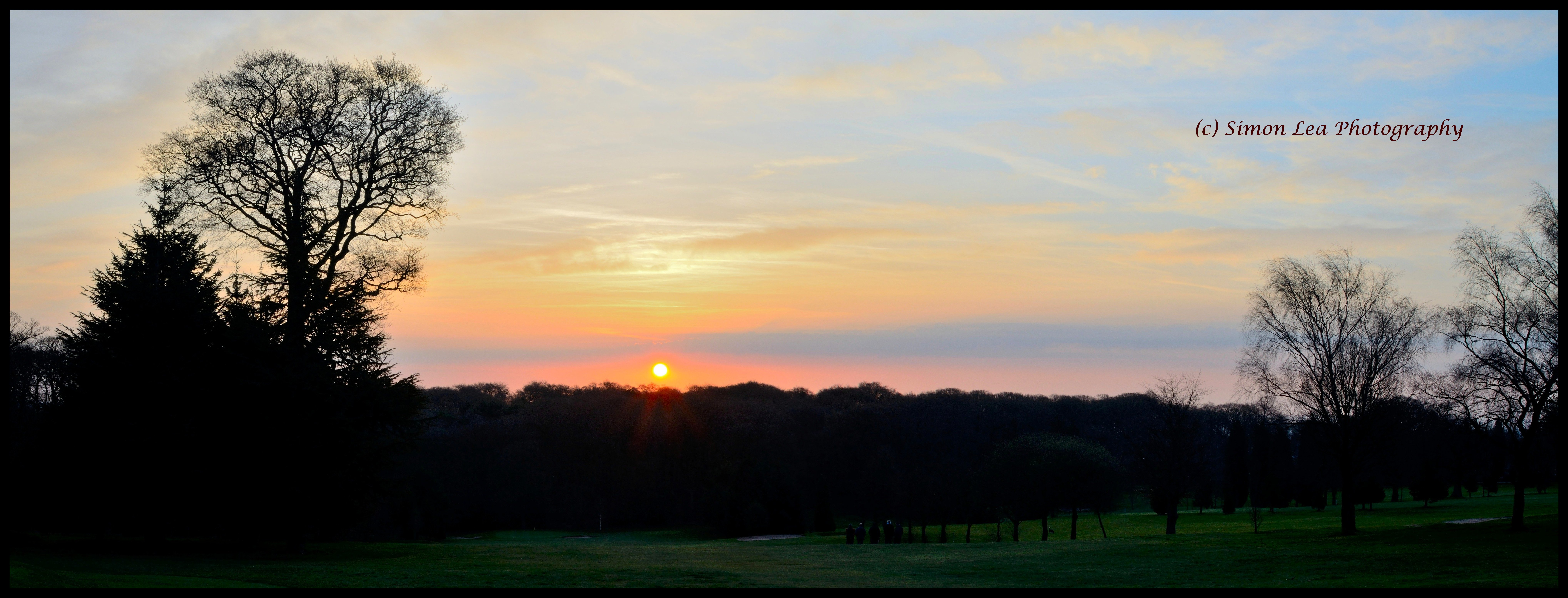 Warley Woods: Sunrise to Sunset in Spring | The Bearwood Blog