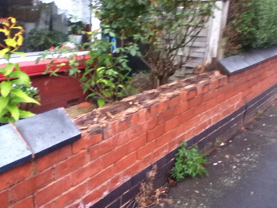 Garden Wall Coping Stones Alices Source The Blue Have A Relatively High Re  Value And They