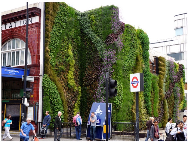 Could 'living walls' work for Bearwood?
